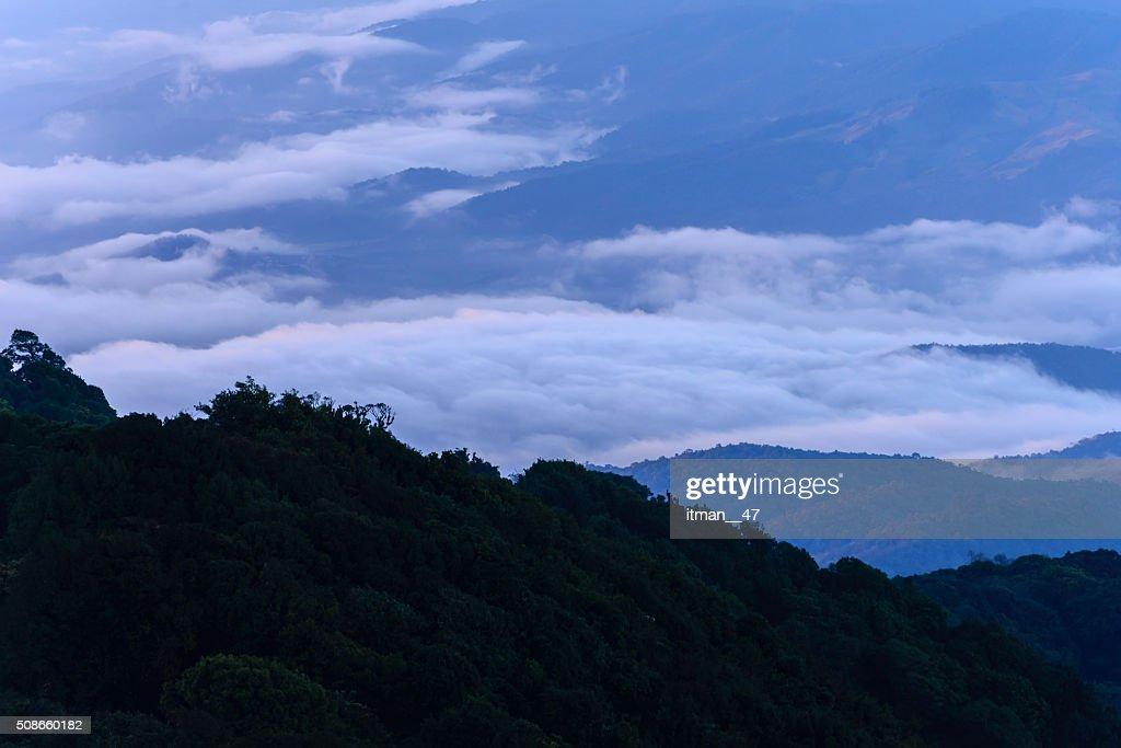 Mountain peak of Doi Pha Hom Pok, Chiang Mai, Thailand. : Stock Photo