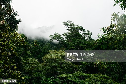 A mountain peeks out from the clouds : Stock Photo