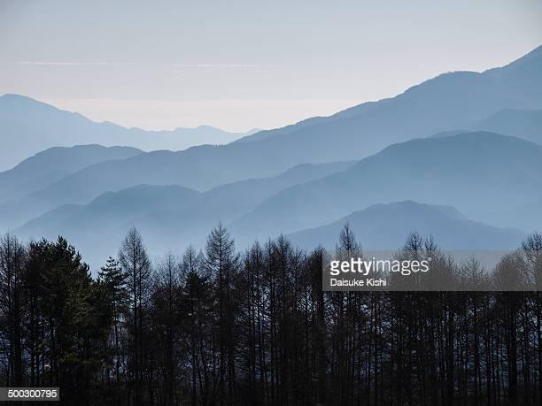 Mountain Range and trees