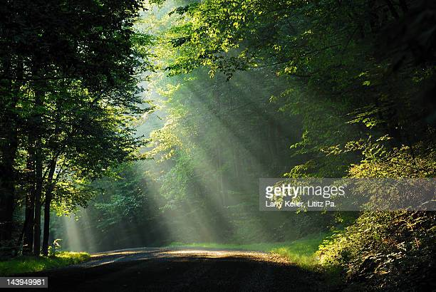 Mountain road with sunrays or sunbeams