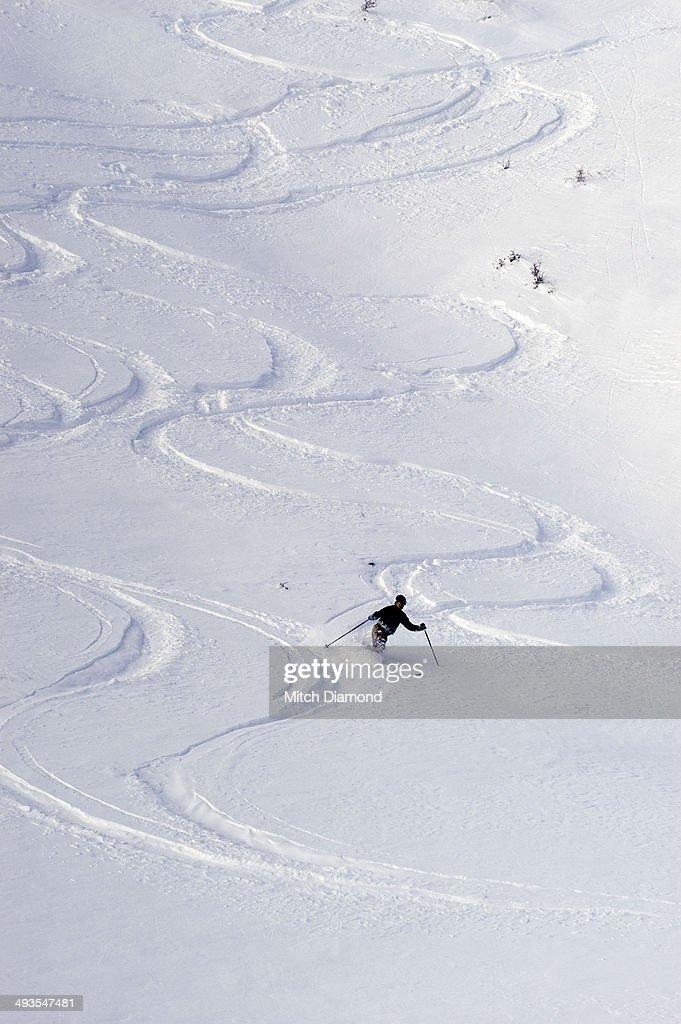 Mountain skiier