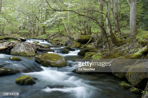 stream in the mountains - photo #29