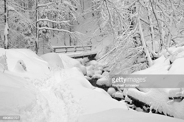 Mountain stream valley covered in thick snow