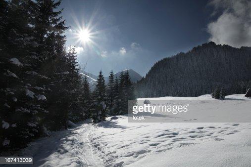 Mountain track : Stock Photo