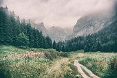 Trip to the mountains in a foggy and rainy day. Photo in retro toy camera style. Zakopane, Poland.