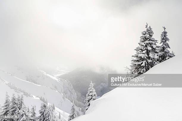 Mountain view in winter Reutte, Tyrol, Austria