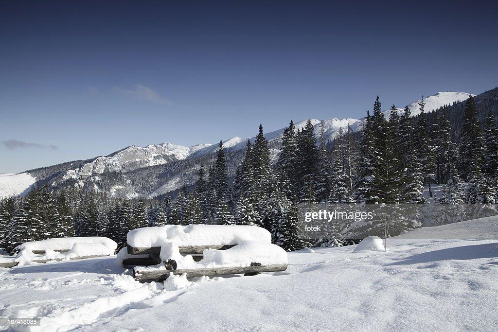 Mountain view : Bildbanksbilder