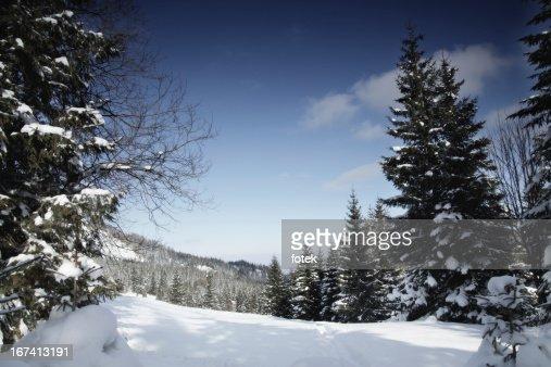 Mountain view : Stockfoto