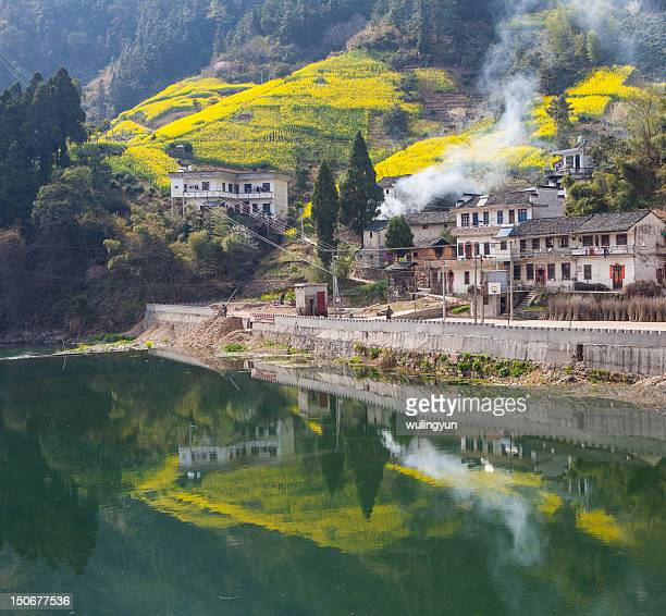 Mountain village with rape flower