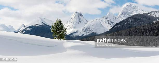 Mountain winter landscape, with snow cornice