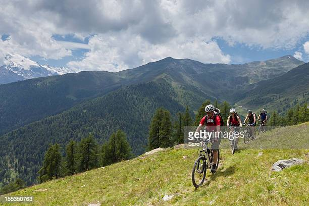 Mountainbike at alpine pastures, South Tyrol