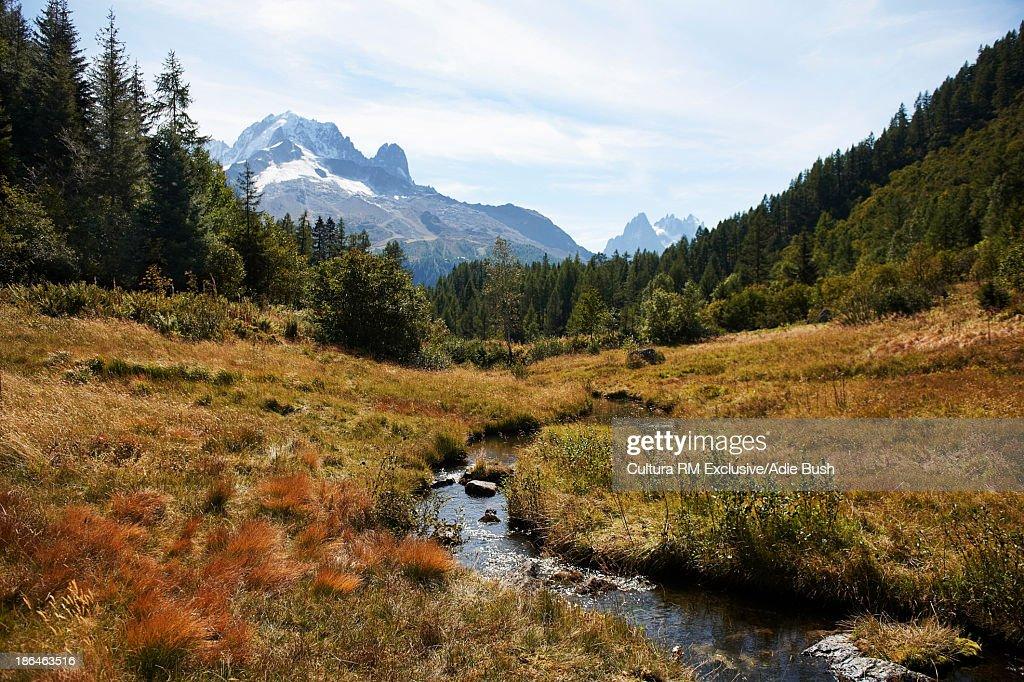 Mountains and stream, Chamonix, Haute Savoie, France : Stock Photo