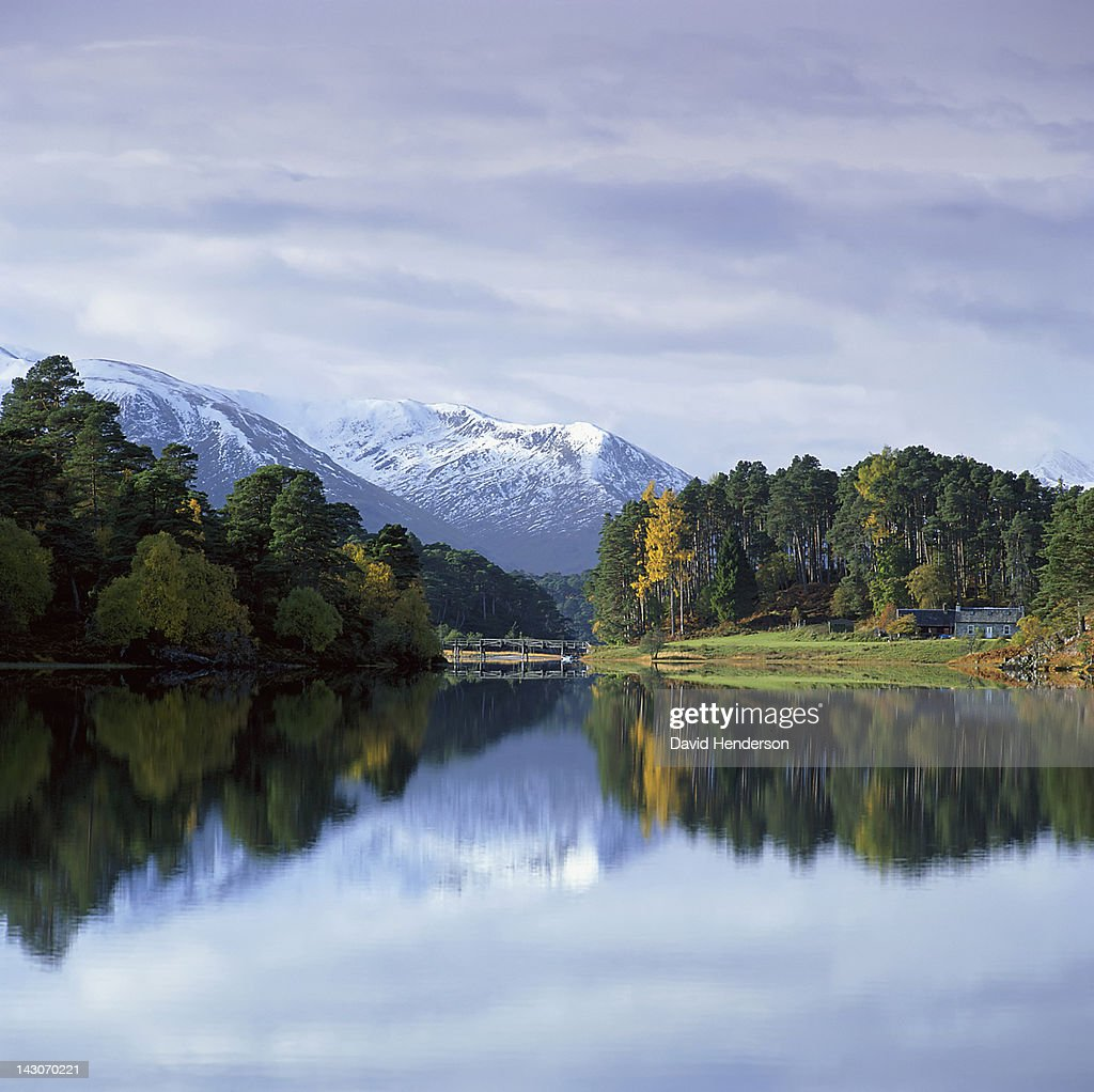 Mountains and trees reflected in still lake : Stock Photo