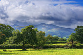 A view of the Brecon Beacons National Park in Wales, at the foot of the mountains in a wooded area.