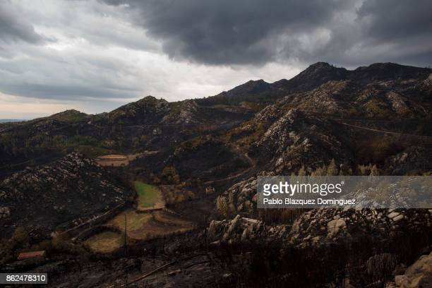 Mountains' surface are burnt near Vouzela on October 17 2017 in Viseu region Portugal At least 41 people have died in fires in Portugal and 4 others...