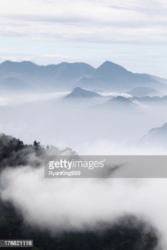 mountains with trees and fog in monochrome color : Stock Photo