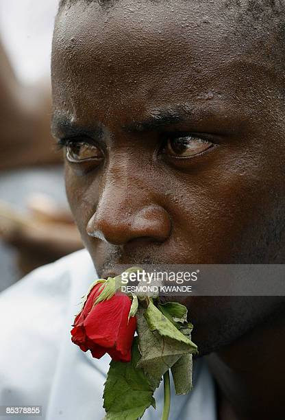 A mourner holds a rose during Zimbabwe Prime Minister Morgan Tsvangirai's wife Susan funeral ceremony in Buhera about 220km from Harare on March 11...