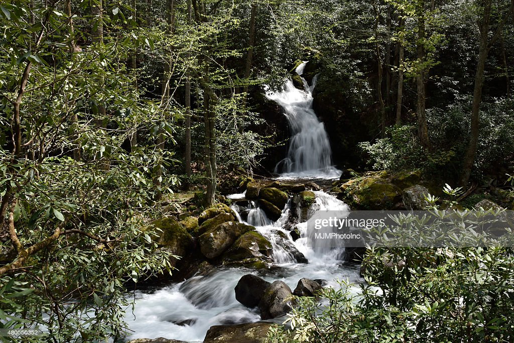 Mouse Creek Falls : Stock Photo