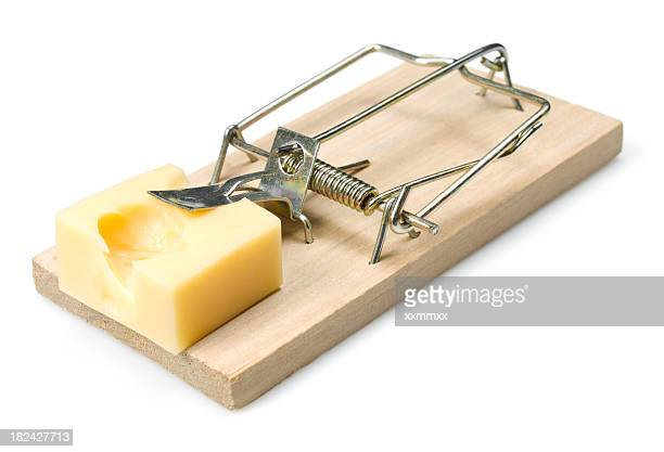 A mouse trap that has been set with some cheese