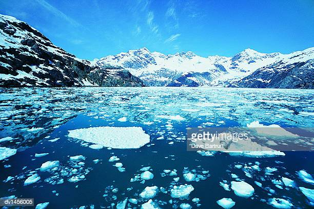 Moutains and Ice Floating on the Sea, Glacier Bay National Park, USA