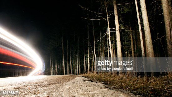 Moving Lights in the Frozen Wood