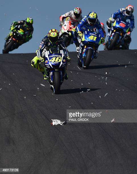 Movistar Yamaha rider Valentino Rossi of Italy races through feathers as the carcass of a seagull lies on the track after smashing into Ducati rider...