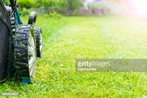 Mowing lawns, Lawn mower on green grass, mower grass equipment, mowing gardener care work tool, close up view, sunny day. Soft lighting : Stock Photo