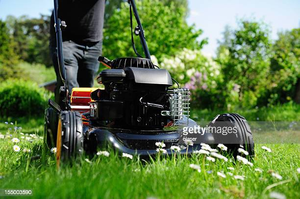 Mowing the lawn in nice green garden