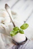 Mozzarella cheese with basil leaves