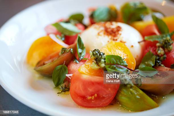 mozzarella salad with cheese and tomatoes