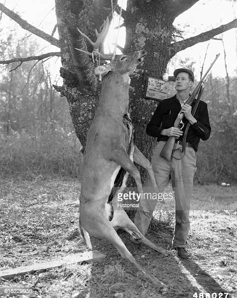 Mr Armistead Y Wiles of Danville Virginia with a deer killed the first day of hunting season at 800 am in the Dismal Creek Management Area Both deer...