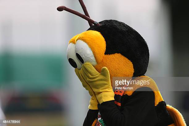 Mr Bumble the Barnet mascot entertains the fans prior to the Sky Bet League Two match between Barnet and Northampton Town at The Hive on August 18...