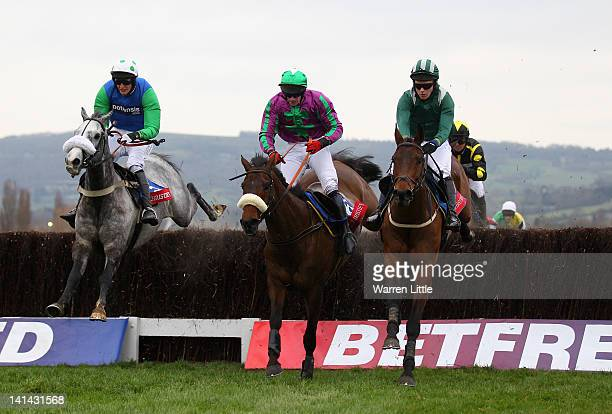 Mr C J Sweeney rides Salsify to victory in the Christie's Foxhunter Steeple Chase at Cheltenham Racecourse on March 16 2012 in Cheltenham England