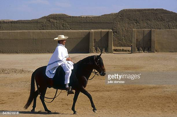 Mr Ganoza an important ceramics collector and horse breeder rides one of his stallions in the main square of the city of Chan Chan The city built by...