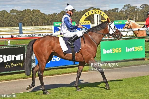Mr Gustavo ridden by Jordan Turner returns to scale after winning the Jayco BM70 Handicap at Bendigo Racecourse on October 21 2017 in Bendigo...