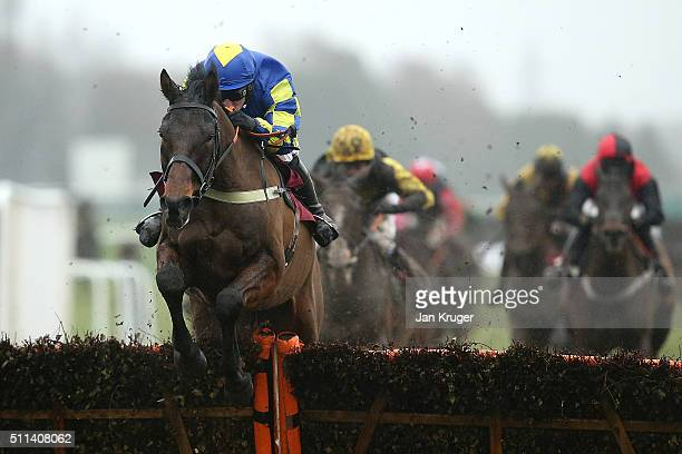 Mr Moonshine ridden by Danny Cook jumps the last to win the Pertemps Network Handicap Hurdle Race at Haydock racecourse on February 20 2016 in...