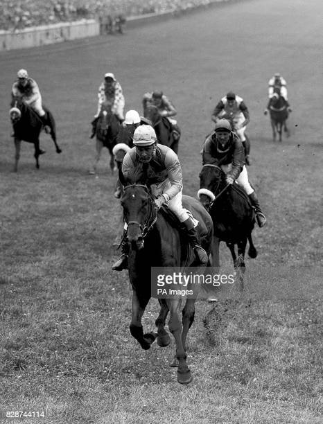Mr S Wootton's THAMES TRADER winning the Moet and Chandon Silver Magnum race for amateur riders at Epsom