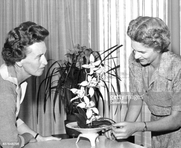 Mrs Arthur G Rdystrom looks on while Mrs James Rae Arenill Jr puts the finishing touches to an orchid arrangement in her home They are cochairmen of...