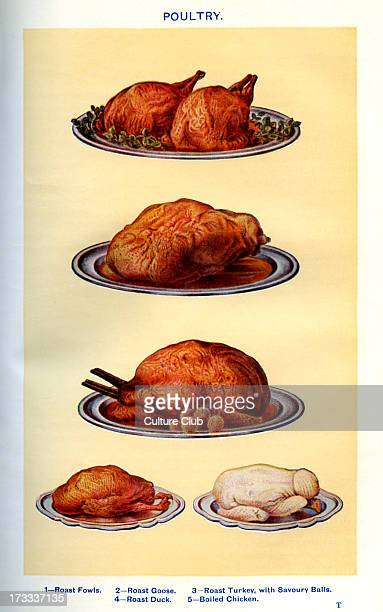 Mrs Beeton 's cookery book poultry Roast fowls Roast goose Roast turkey with savoury balls Roast duck Boiled chicken New edition of the cookerybook...