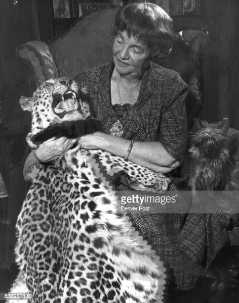 Mrs McIntosh Buell who leaves Feb 15 for her second tiger shoot in India examines a panther trophy from her first safari in 1958 Credit Denver Post