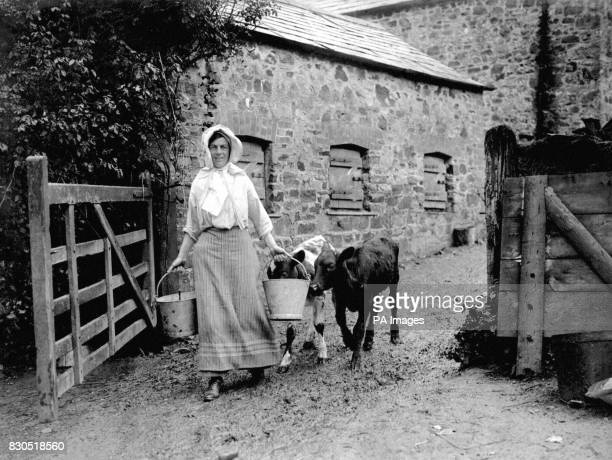 Mrs Spurin an allround worker with calves on the estate of Mr George Brendon at Bude in Cornwall Women had to take on a greater number of tasks as...
