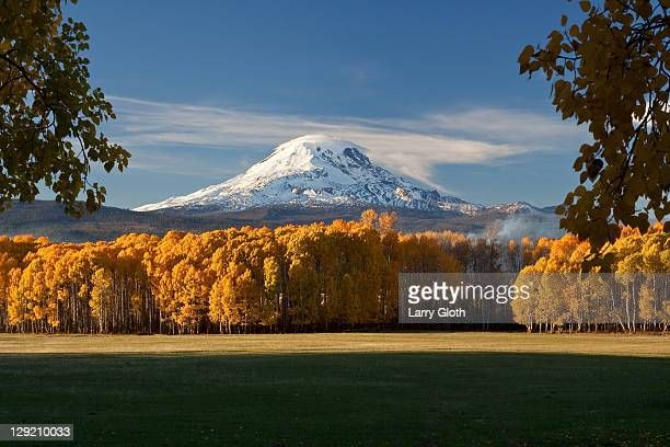 Mt. Adams autumn