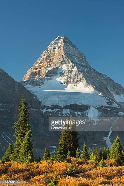 Mt. Assiniboine, Canadian Rockies