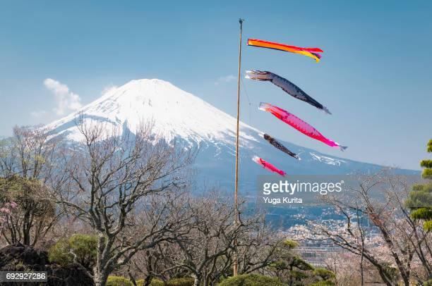 Mt. Fuji and Koinobori
