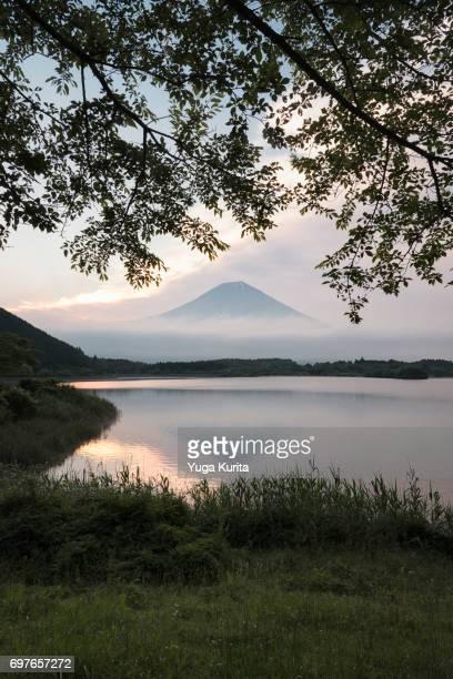 Mt. Fuji from Lake Tanuki in Summer