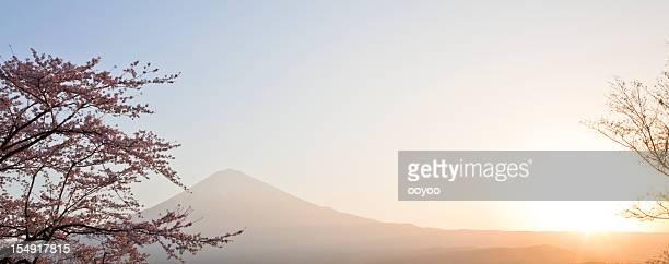富士山の春