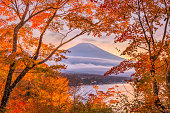 Mt. Fuji, Japan autumn at Yamanaka Lake at dusk.