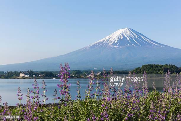 Mt. Fuji, Kawaguchiko, japan