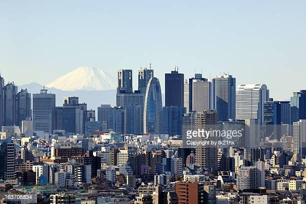 Mt. Fuji & Shinjuku Skyscrapers