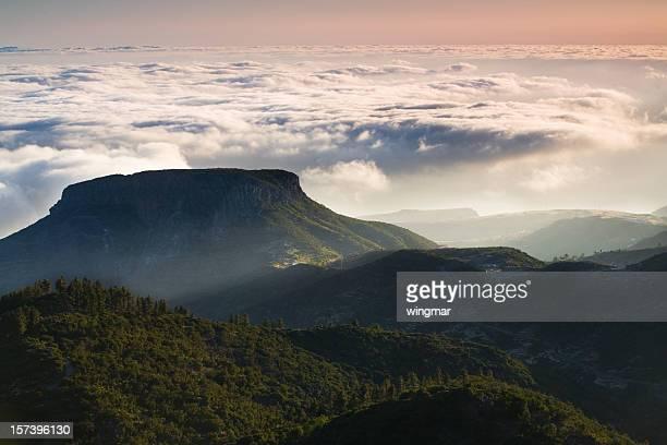 Mt. Garajonay-La Gomera